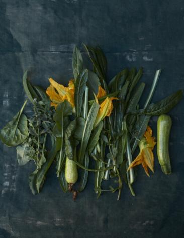 Martha Stewart Living - Greens
